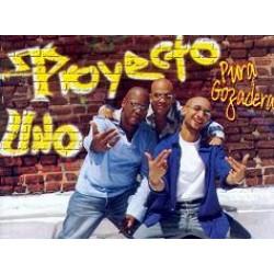 Proyecto Uno (5)
