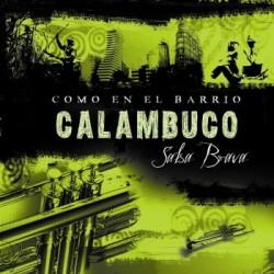 Calambuco (4)