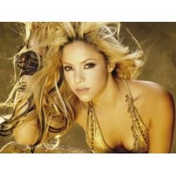 Shakira (9)